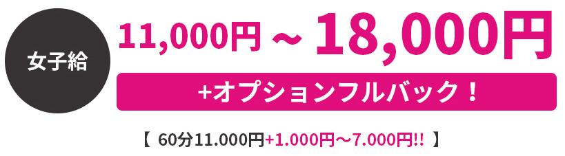 11,000円~18,000円+オプションフルバック!